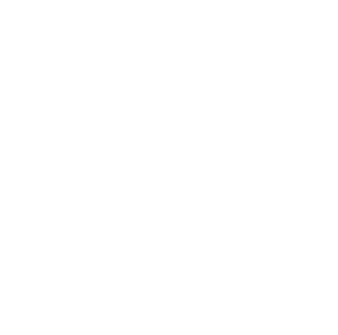 flying-insect-icon